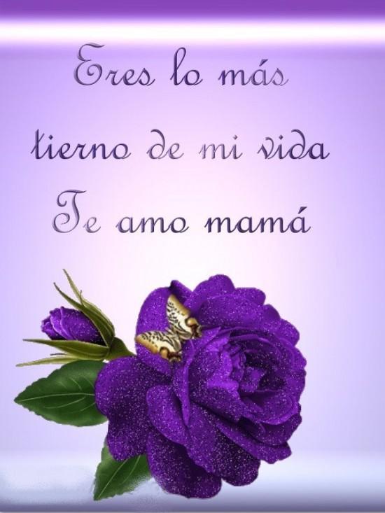 mamam4