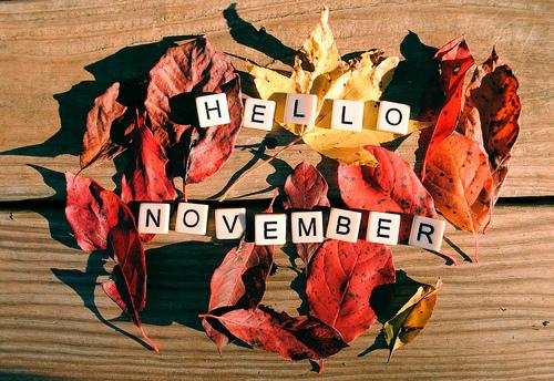 noviembrehello2