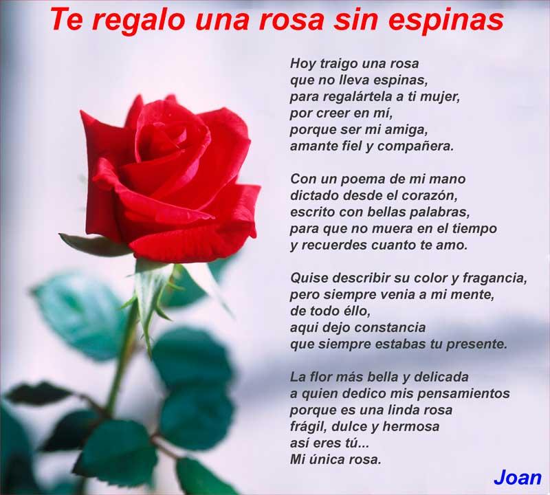 Poemas de AMOR Cortos para Enamorar muy Romanticos