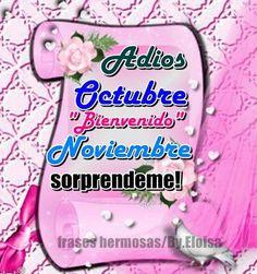 noviembreadios11
