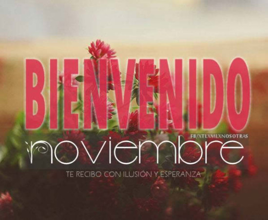 noviembrebienvenido4