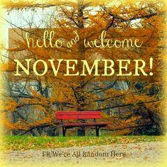 noviembrewelcome6