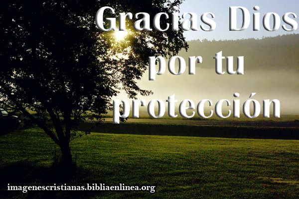 gracias-Dios-por-tu-proteccion