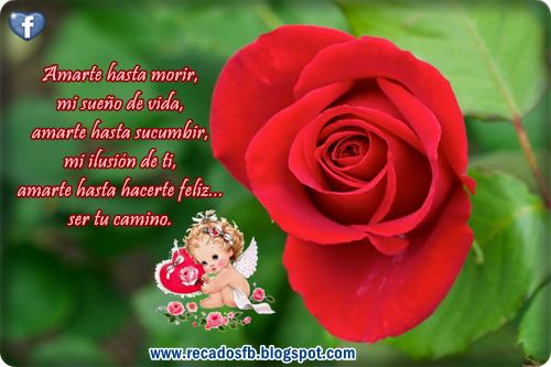 Imagenes Romanticas Frases De Amor Y Sentimiento