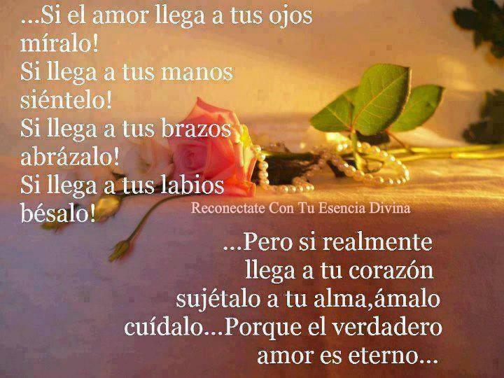Reflexiones Románticas De: Hermosas Imágenes Romanticas Con Reflexiones De Amor