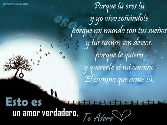 Versos Y Poemas De Amor Bonitos Para Enamorar A Mi Novia