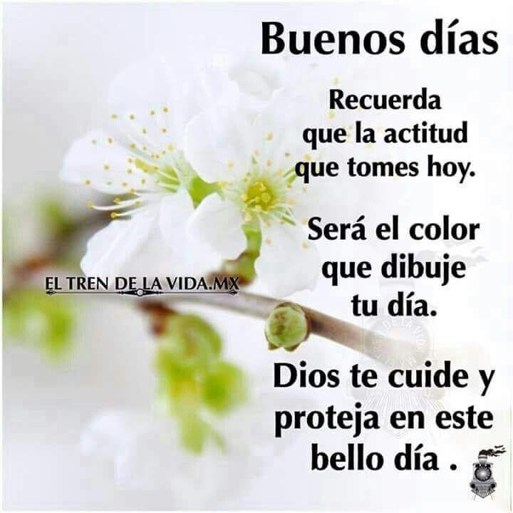 Imagenes De Buenos Dias Amor Mensajes Frases Y