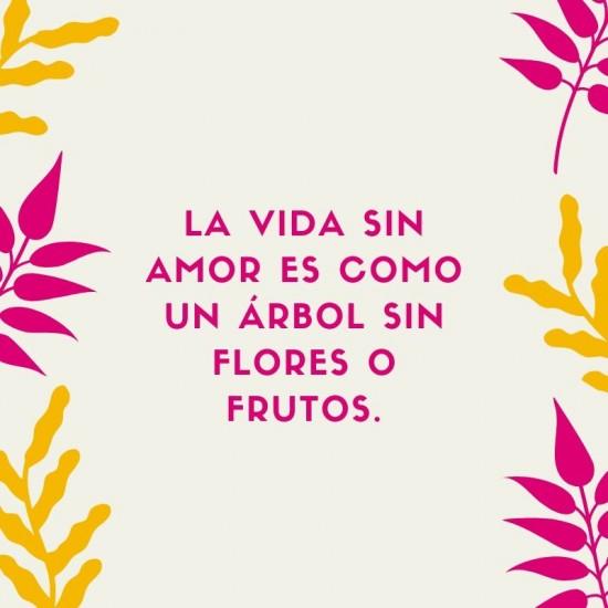 Frases de Amor para Tumblr, Instagram, whatsapp y Facebook