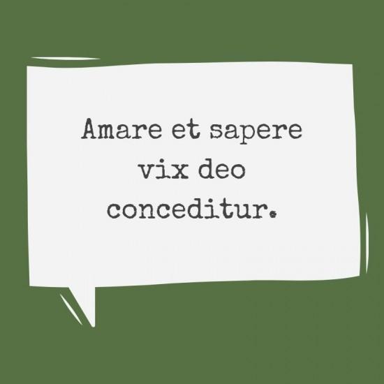 Frases De Amor En Latín Con Imágenes Y Significado